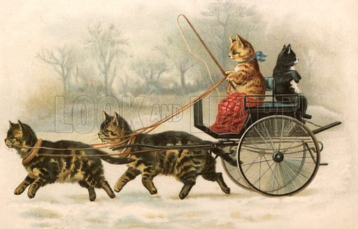 A carriage pulled by cats