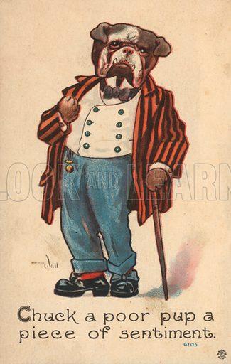 Bulldog dressed as a gentleman