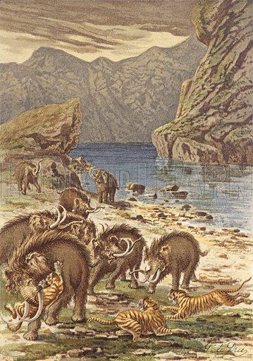 La France avant l'homme, combat de mammouths et de chats geants