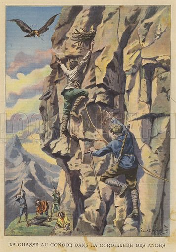 Hunting condors in the Andes. Illustration for Le Petit Parisien, 21 April 1907.