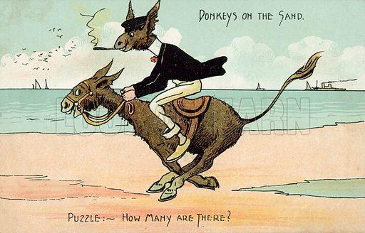 Donkeys on the sand