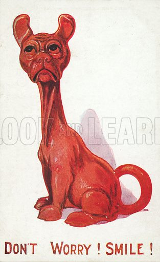 Curious red dog, Don't Worry! Smile! Postcard, early 20th century.