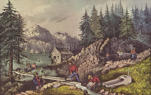 Gold Mining in California