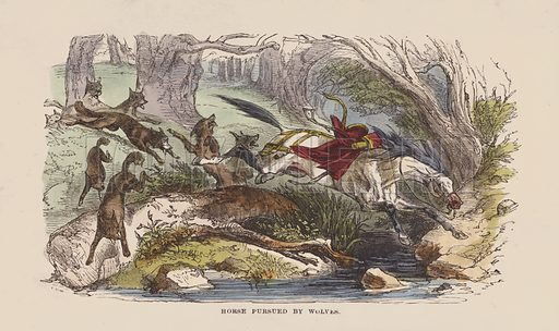 Horse pursued by wolves. Illustration for The Life and Adventures of Robinson Crusoe by Daniel De Foe (George Routledge, 1851). Contemporary hand-coloured engraving.