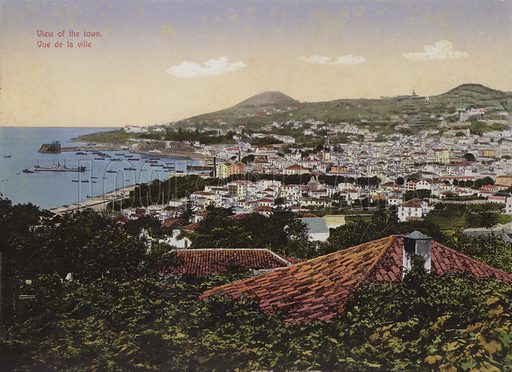 View of the town. Illustration for a souvenir booklet about Madeira, late 19th or early 20th century.