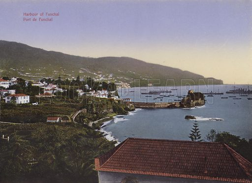 Port of Funchai. Illustration for a souvenir booklet about Madeira, late 19th or early 20th century.
