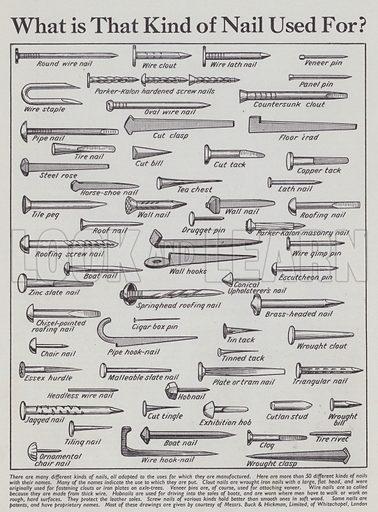Nails. Illustration for Everybody's Enquire Within (Amalgamated Press, c 1937).