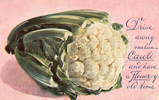 Dive away melan-cauli and have a flower-y old time