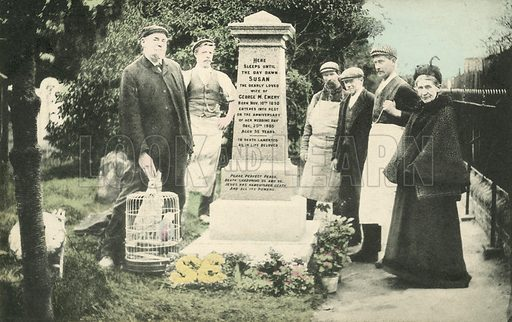 A group of people beside the grave of a Susan Emery. Postcard, early 20th century.