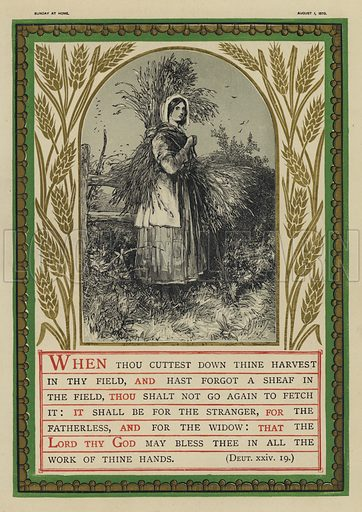 When thou cuttest down thine harvest in thy field, Deuteronomy XXIV, 19.  Illustration for Sunday at Home, 1870/71.