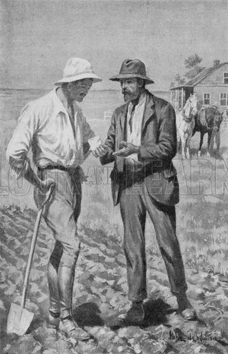Dr Charles Saunders holds in his hand the first Marquis Wheat.  Illustration for an early edition of The Children's Encyclopedia edited by Arthur Mee.