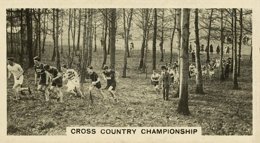 Cross Country Championship. Illustration for one of a set of cigarette cards on the subject of Homeland Events, published by Wills, early 20th century.