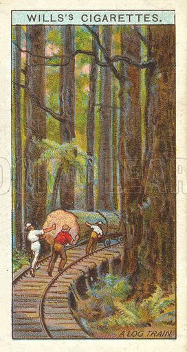 A Log Train, Gippsland. Illustration for one of a series of cigarette cards on the subject of Overseas Dominions, Australia published by Wills's Cigarettes, early 20th century.