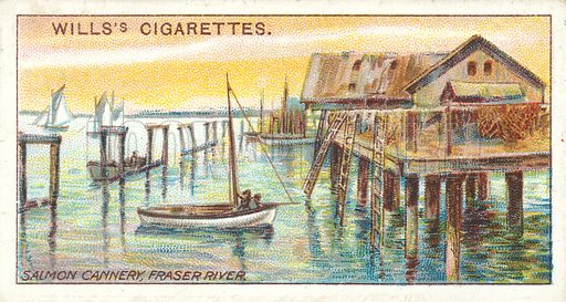 Salmon Cannery, Fraser River. Illustration for one of a series of cigarette cards on the subject of Overseas Dominions, Canada published by Wills's Cigarettes, early 20th century.