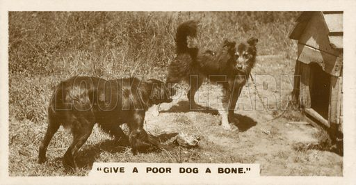Give A Poor Dog A Bone. Illustration for one of a series of cigarette cards entitled Real Photographs published by De Reszke, early 20th century.