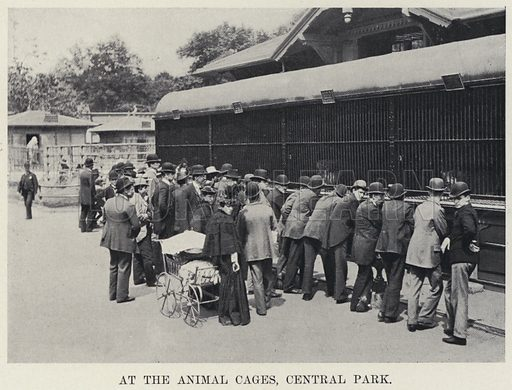 At the Animal Cages, Central Park