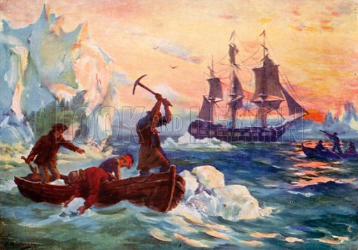 Captain Cook's expedition obtaining ice for a supply of fresh water