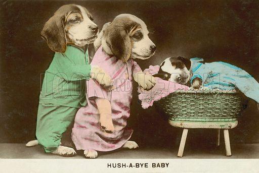 Hush-a-bye baby: anthropomorphic dogs