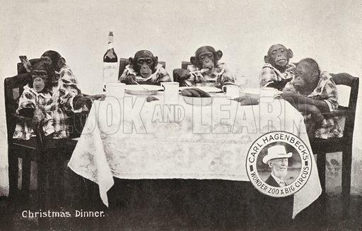 Chimpanzees and orangutan eating Christmas dinner, Carl Hagenbeck's Wonder Zoo and Big Circus, Olympia, London. Postcard, early 20th Century.
