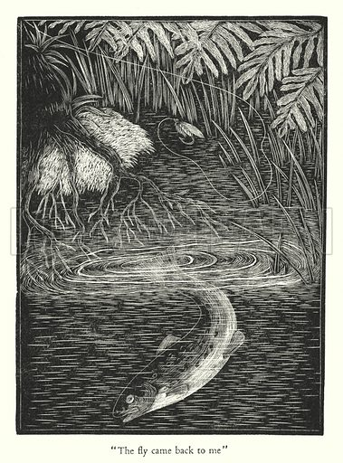 """The fly came back to me."" Illustration for Fly Fishing by Viscount Grey of Fallodon (J M Dent, 1930)."