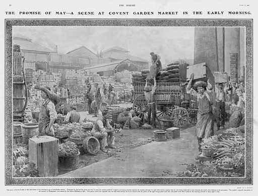 Scene at Covent Garden Market, London, in the early morning. Illustration for The Sphere, Vol 29, 6 April - 29 June 1907.