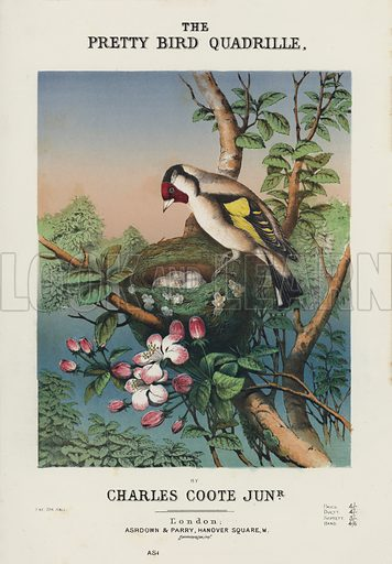 The Pretty Bird Quadrille, by Charles Coote Junior. Sheet music cover.