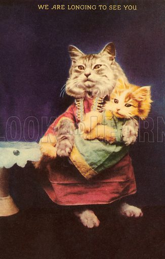 Cat and kitten. Postcard, early 20th century.