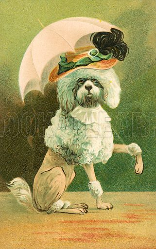 Dog wearing a hat and holding an umbrella. Postcard, early 20th century.
