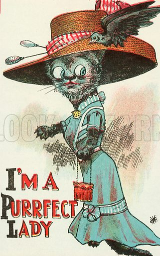Cat wearing a large, wide-brimmed, ladies' hat. Postcard, early 20th century.