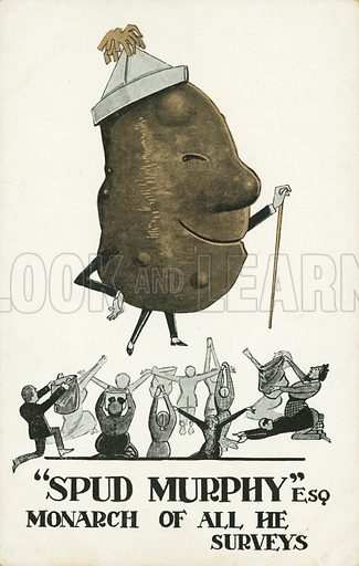 Spud Murphy, monarch of all he surveys. Postcard, early 20th century.