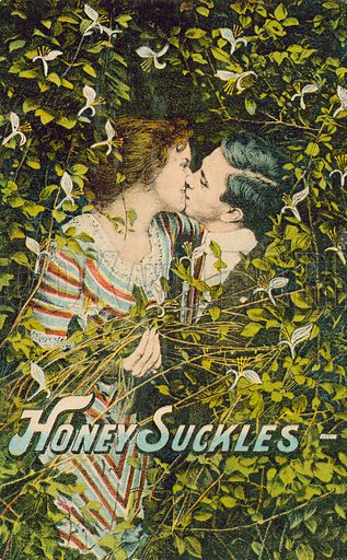 Couple kissing in a honeysuckle bush. Postcard, early 20th century.