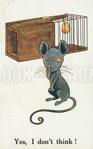 Clever mouse avoiding a mousetrap