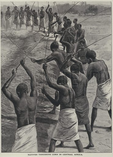 Threshing corn in Central Africa. Illustration from The Cottager and Artisan (The Religious Tract Society, London, 1909).