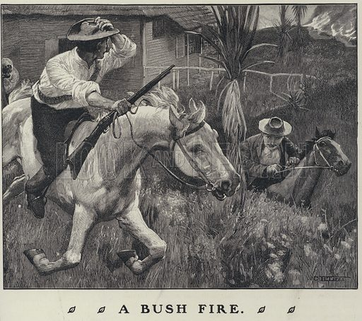 Fleeing a bush fire on horseback in Australia. Illustration from The Cottager and Artisan (The Religious Tract Society, London, 1909).