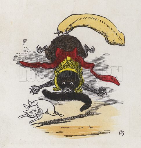 Fight between two cats. Illustration from Nursery Nonsense; or, Rhymes without Reason, by D'Arcy W Thompson (Griffith and Farran, London, 1865).