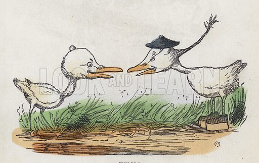 Two birds facing each other. Illustration from Nursery Nonsense; or, Rhymes without Reason, by D'Arcy W Thompson (Griffith and Farran, London, 1865).