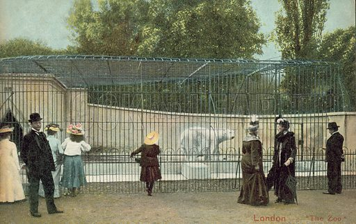 People visiting the polar bear enclosure at London Zoo. Postcard, early 20th century.