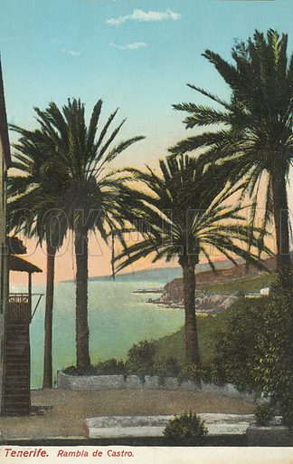 Rambla de Castro, Tenerife, Canary Islands, Spain. Postcard, early 20th century.