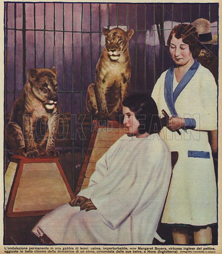English hairdresser Margaret Seyers calmly doing the hair of a circus lion tamer, watched by her animals, Hove, Sussex