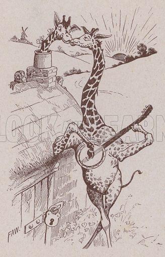 The Giraffes' courtship