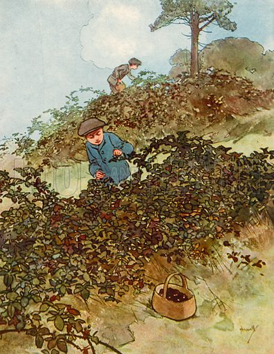 Blackberrying.  Illustration for Chums by John Hassall (Thomas Nelson, c 1906).