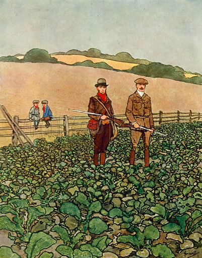 Partridge shoot.  Illustration for Chums by John Hassall (Thomas Nelson, c 1906).