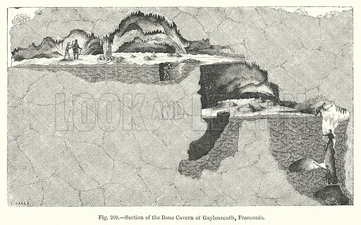 Section of the bone cavern of Gaylenreuth, Franconia. Illustration for The Museum of Science and Art edited by Dionysius Lardner (Walton and Maberly, 1854–56).