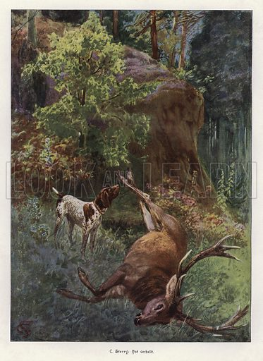 Hound barking over the body of a dead stag. Illustration from Moderne Kunst in Meister-Holzschnitten (Richard Bong, Berlin, c1904).