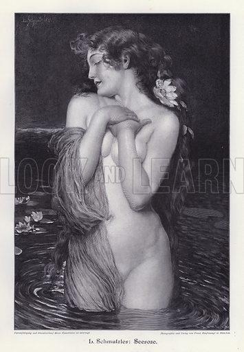 Water Lily. Illustration from Moderne Kunst in Meister-Holzschnitten (Richard Bong, Berlin, c1904).