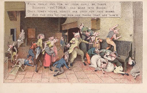 Pigs playing blind man's buff. Advertising postcard, early 20th century.