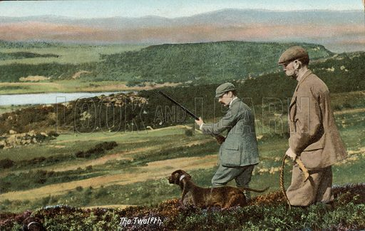 The Glorious Twelth (12th August), start of the red grouse shooting season in Britain. Postcard, early 20th century.