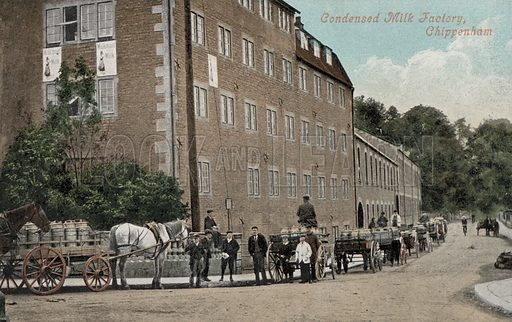Condensed milk factory, Chippenham, Wiltshire. Postcard, early 20th century.