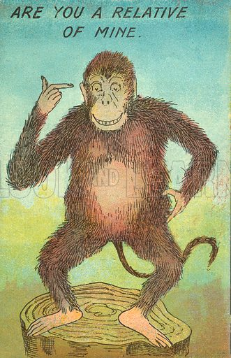 Monkey referring to man and evolution.  Postcard, early 20th century.