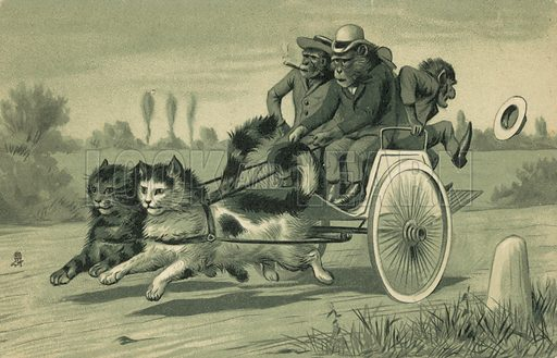 Monkeys driving a carriage pulled by two cats. Postcard, early 20th century.
